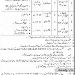 Regional Training Institute Jobs 2020 OTS Application Form Download