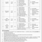 Ministry of Planning Development and Reform OTS Jobs 2020 Application form Eligibility Criteria