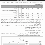 Department of Tourist Service OTS Jobs 2020 Application form Eligibility Criteria
