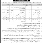 District Population Welfare Office Islamabad Jobs 2020 Application Form Eligibility Criteria