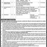 LESCO WAPDA NTS Jobs 2020 Application Form Roll No Slip Download