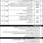 MOHR Ministry of Human Rights NTS Jobs 2020 Application Form
