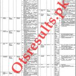 Punjab Population Welfare Department Jobs 2020 NTS Roll No Slip