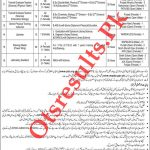 WAPDA Teacher Jobs 2020 PTS Apply Online