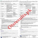 Gilgit Baltistan Directorate of Education College CTSP Jobs 2020 Application Form