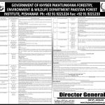 ETEA Forestry Environment & Wildlife Department KPK Jobs 2020 Apply Online Roll No Slip